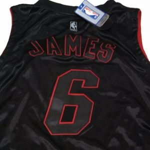 low priced 4312b 84ed8 Adidas LeBron James Miami Heat Jersey #6 NBA Store NWT